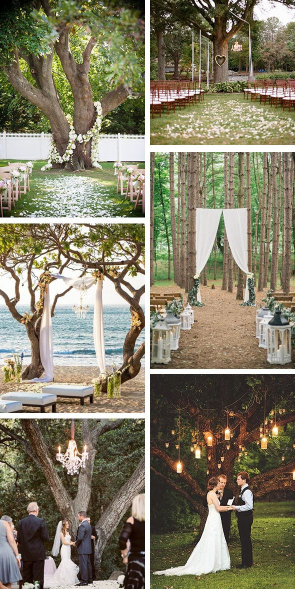 Outdoor wedding ceremony under a tree wedding ideas for Outdoor wedding decorating ideas