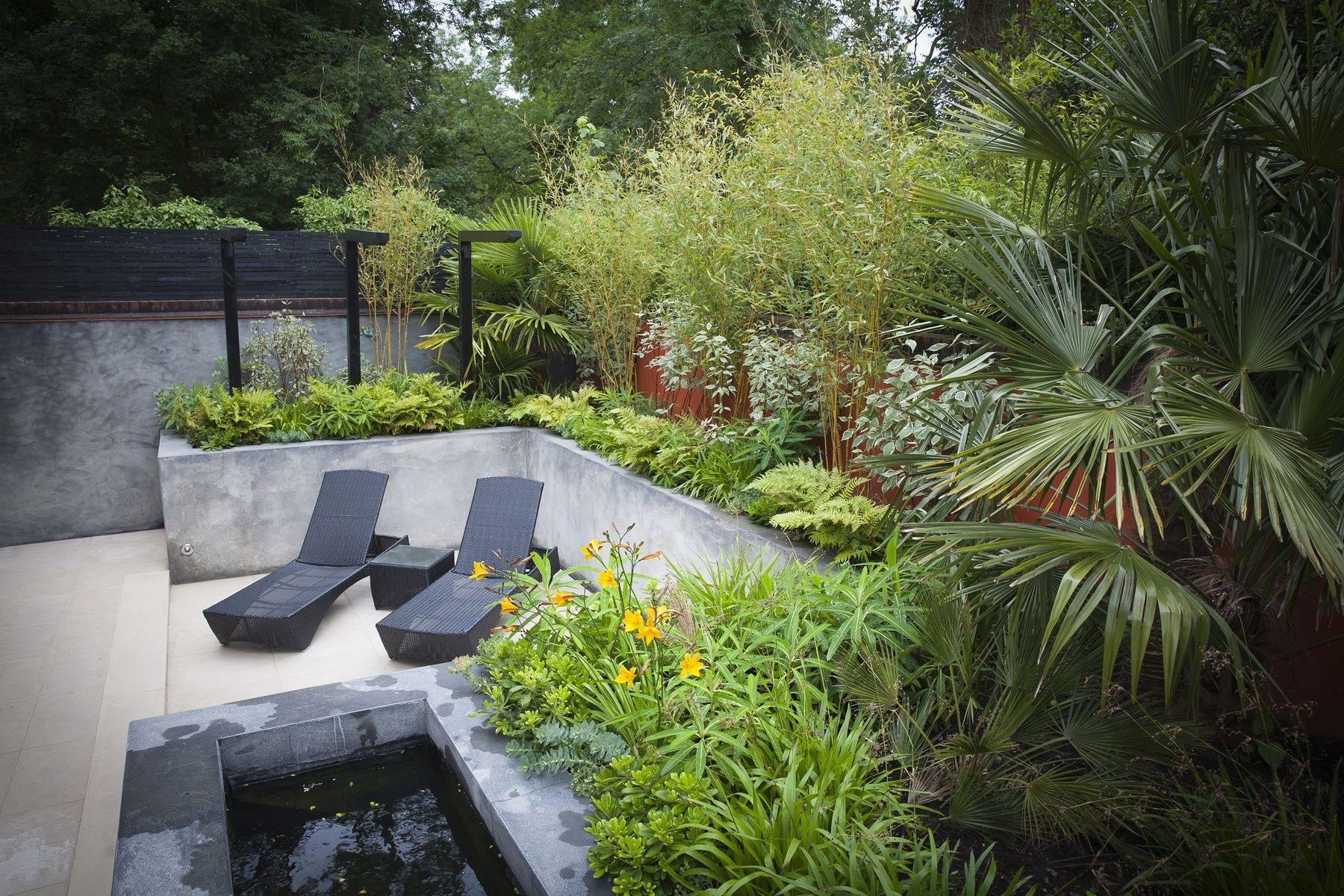 Daniel Shea S Portfolio Contemporary Courtyard Reigate Courtyard Gardens Design Garden Spaces Contemporary Garden Design