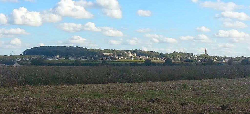 Profil de Brézé, avec son château