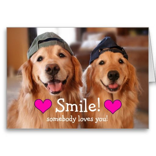 Golden Retriever Somebody Loves You Valentine S Day Greeting Card