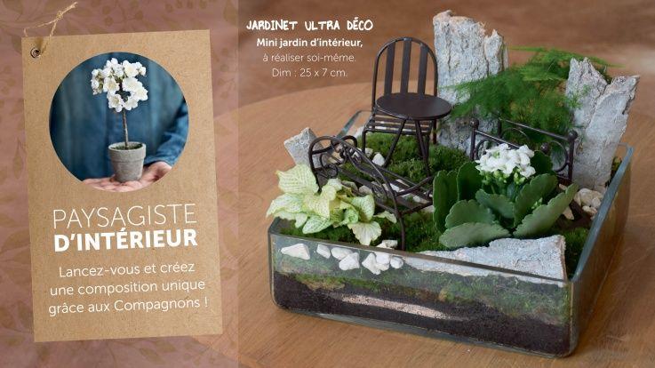 Mon petit jardin du0027intérieur ! Jardin du0027intérieur Pinterest - mini jardin japonais d interieur