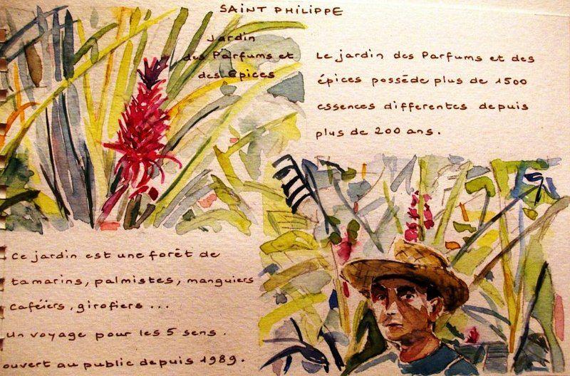 Dessins et aquarelles jean pierre kosinski carnet de - Le jardin des parfums et des epices saint philippe ...