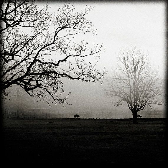 On sale 20 off reach a foggy black and white landscape