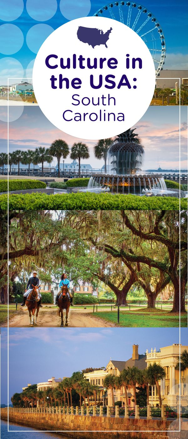 Explore the southern charm of South Carolina. Stroll along Hilton Head Island's white-sand beaches or wander through historic Charleston's plantations, or relax in Myrtle Beach's sun, sand and surf.