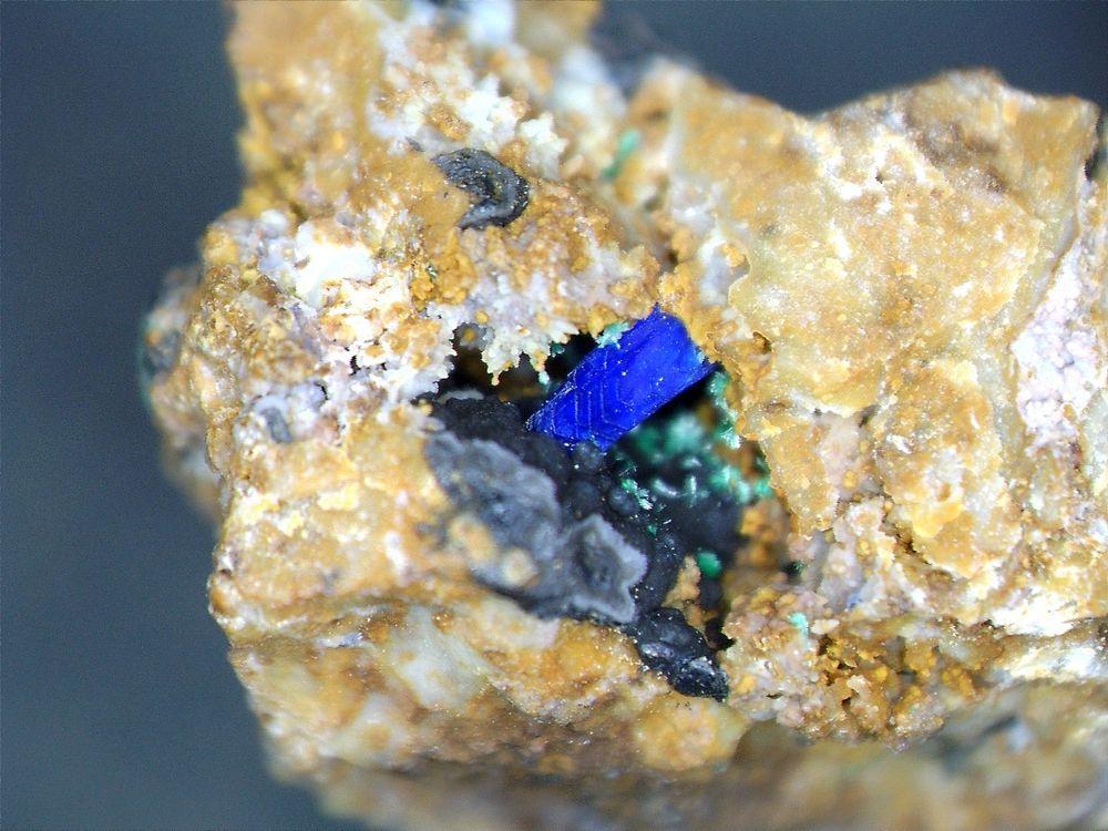 Stunning Electric Blue Azurite Xl Micromount, Pima, AZ. ex. A. M. Munger Coll.