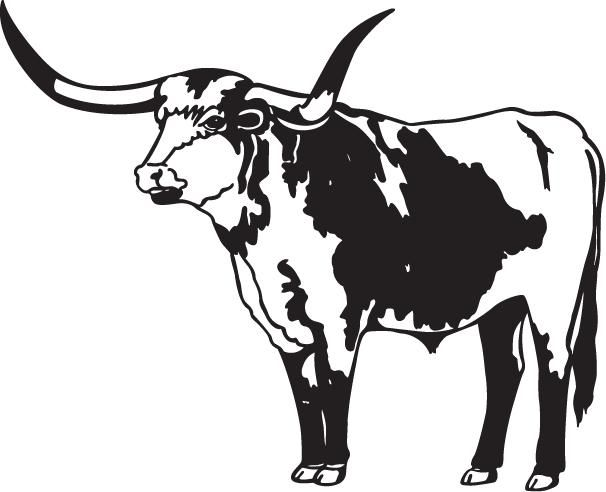 Pin by brent mason on yard art pinterest longhorn cow for Longhorn coloring page