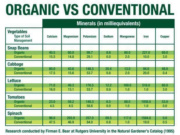 Nutritional Differences Between Organic And Conventional Food