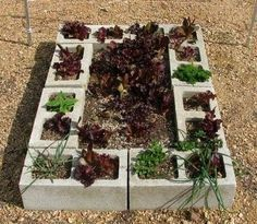 Gardening Ideas On A Budget small garden ideas on a budget Diy Garden Ideas On A Budget Google Search