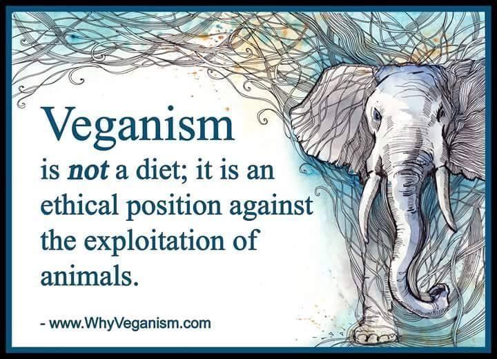 www.WhyVeganism.com (image src: https://twitter.com/RealDaniBre/status/595240460257464320/photo/1)