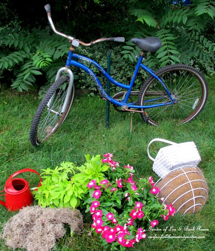 Diy Project My Bicycle Planter, Gardening, Repurposing Upcycling, Assemble  The Materials Baskets Plants Dried Moss Sphagnum Or Spanish Moss Metal  Rebar Or ...