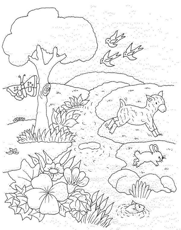 pin do a lola em coloring pages pinterest desenhos primavera