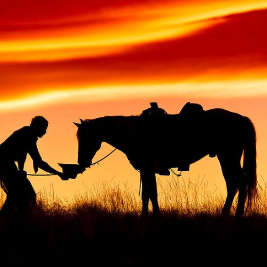 Cowboy and his horse at sunset If you love horses: ~~~> www.happyhorsehea... Cowboy und sein Pferd bei Sonnenuntergang Wenn Sie Pferde lieben: ~~~ Bilder Sonne, Pferde Silhouette, Sonnenfinsternis, Westernreiten, Wilder Westen, Fotobearbeitung, Alte Autos, Schöne Pferde, Aquarell Malen