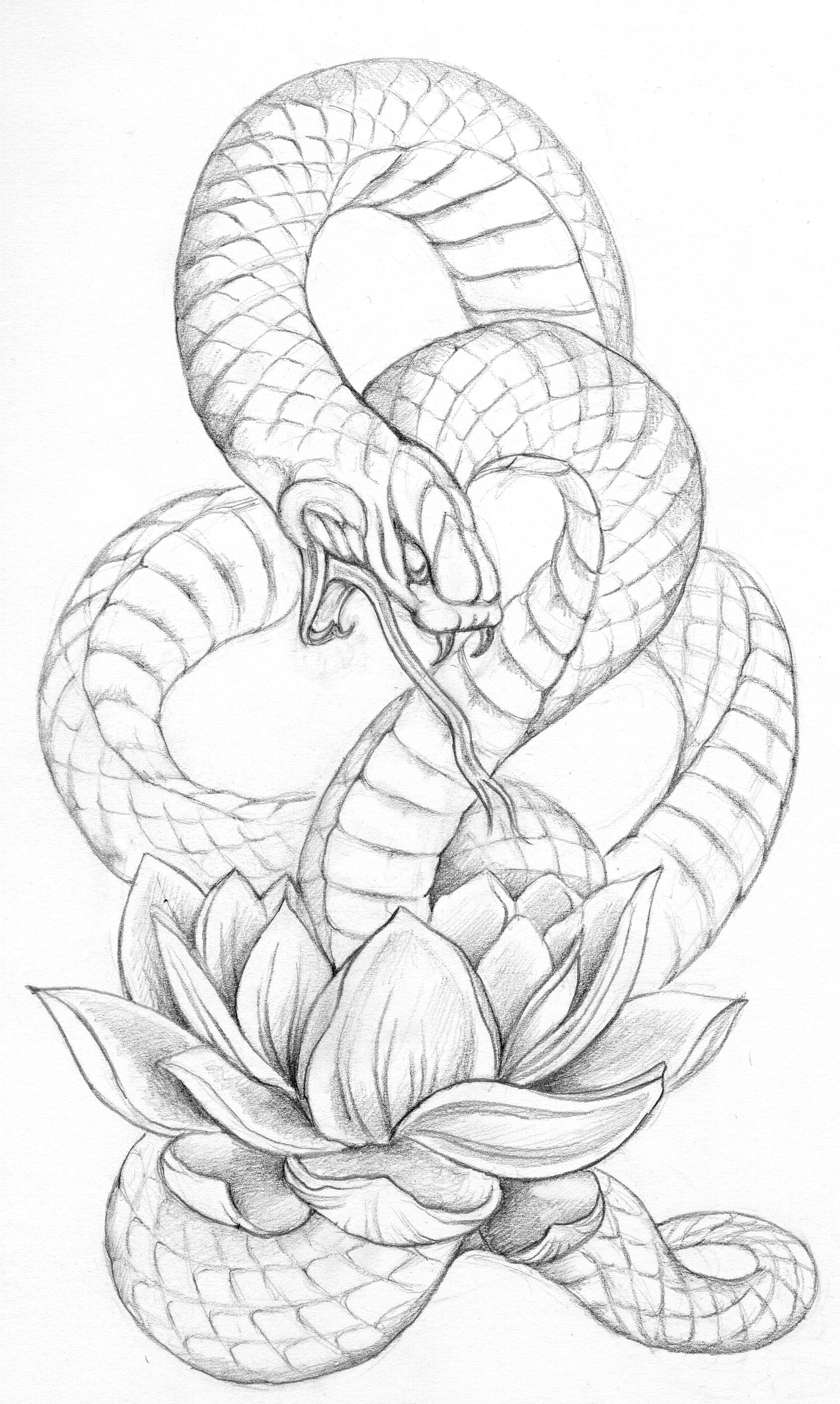 Google Image Result For Katseyedesignca Albums Tattoos Images Snake 26lotus