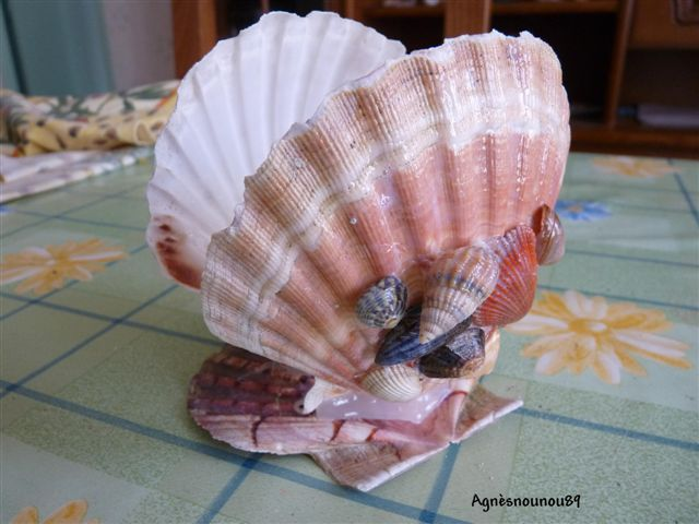 Pingl par magali caron sur coquillage pinterest - Bricolage avec coquillage ...