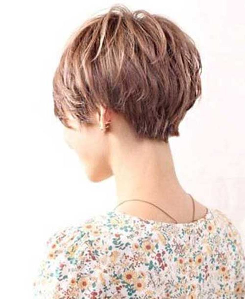 Thick Hair Pixie Hairstyles Back View   Vtwctr