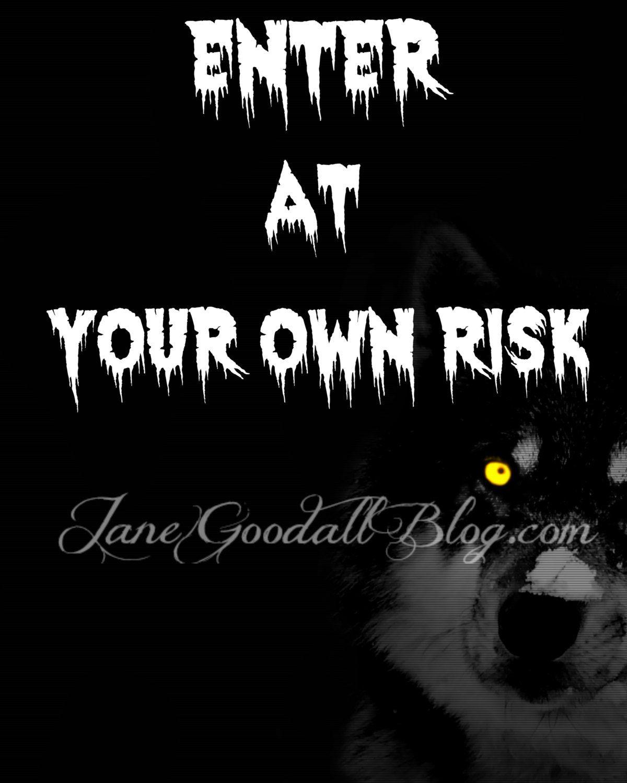 Enter At Your Own Risk, Bedroom Door Sign, Office Accessories, Indoor Wall  Art