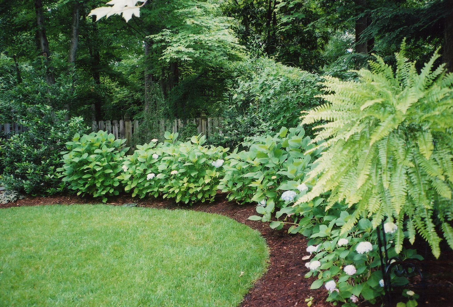 privacy gardens photos | Privacy Design | Tarheel ...