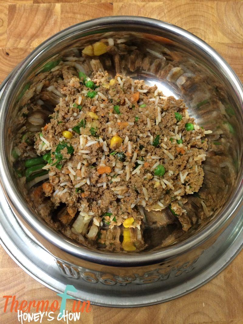 ThermoFun Honeys Chow Recipe Dog food recipes, Make