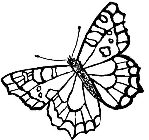 Happy Butterfly Embroidery Design Free Butterfly Embroidery Designs