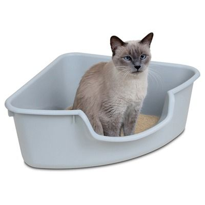 Tips for getting rid of litter box odors. http://www.critterzoneusa.com/pages/blog#LitterBoxOdors