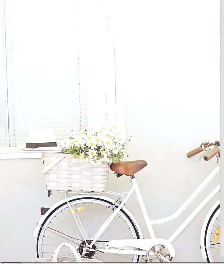 Vintage Bikes Flowers Bike Basket Decorating Blogs Bicycle