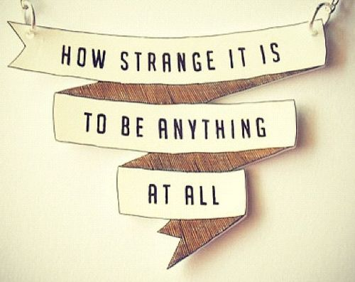 43291cc8b How strange it is to be anything at all (Neutral Milk Hotel) | Words ...