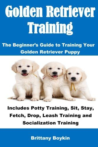 Golden Retriever Training The Beginner S Guide To Training Your