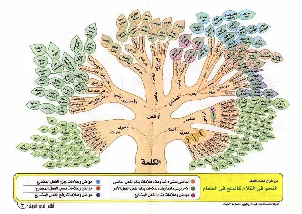 هام جدا بعض قواعد اللغة العربية Arabic Language Learn Arabic Language Learning Arabic