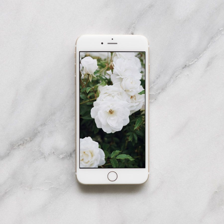Get this free Los Angeles inspired Floral Mobile Wallpaper by Jessica Comingore on the west elm blog!