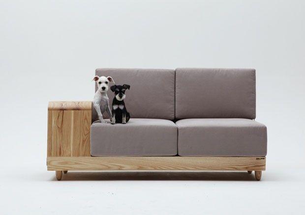 Sofá bom pra cachorro!