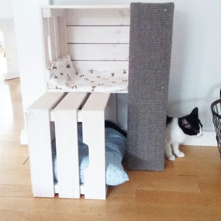 kratzbaum aus ikea kisten selbstgemacht cats pinterest chats lit pour chat et jouets pour. Black Bedroom Furniture Sets. Home Design Ideas