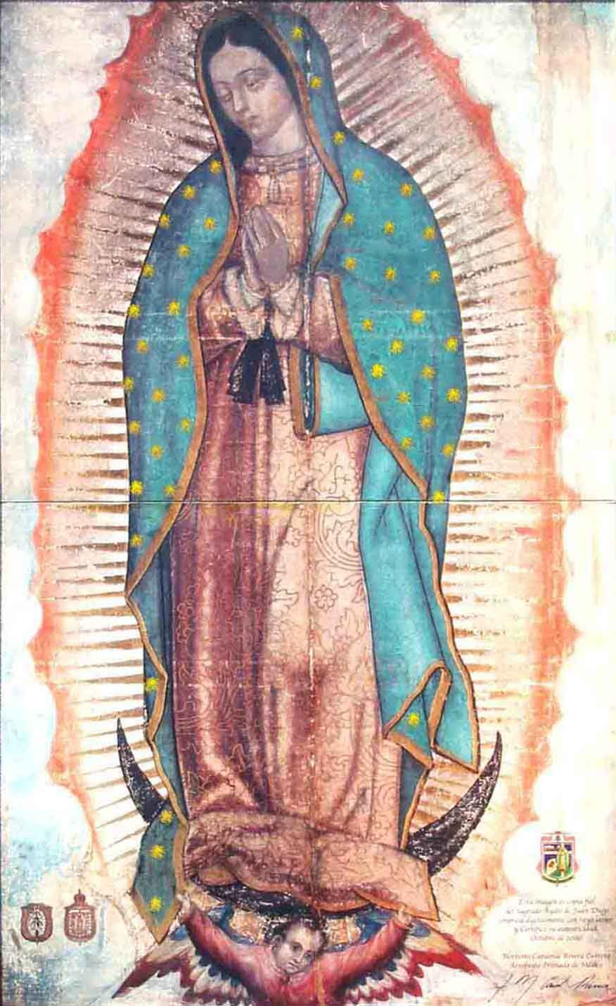 Understanding Catholic Devotion to Mary