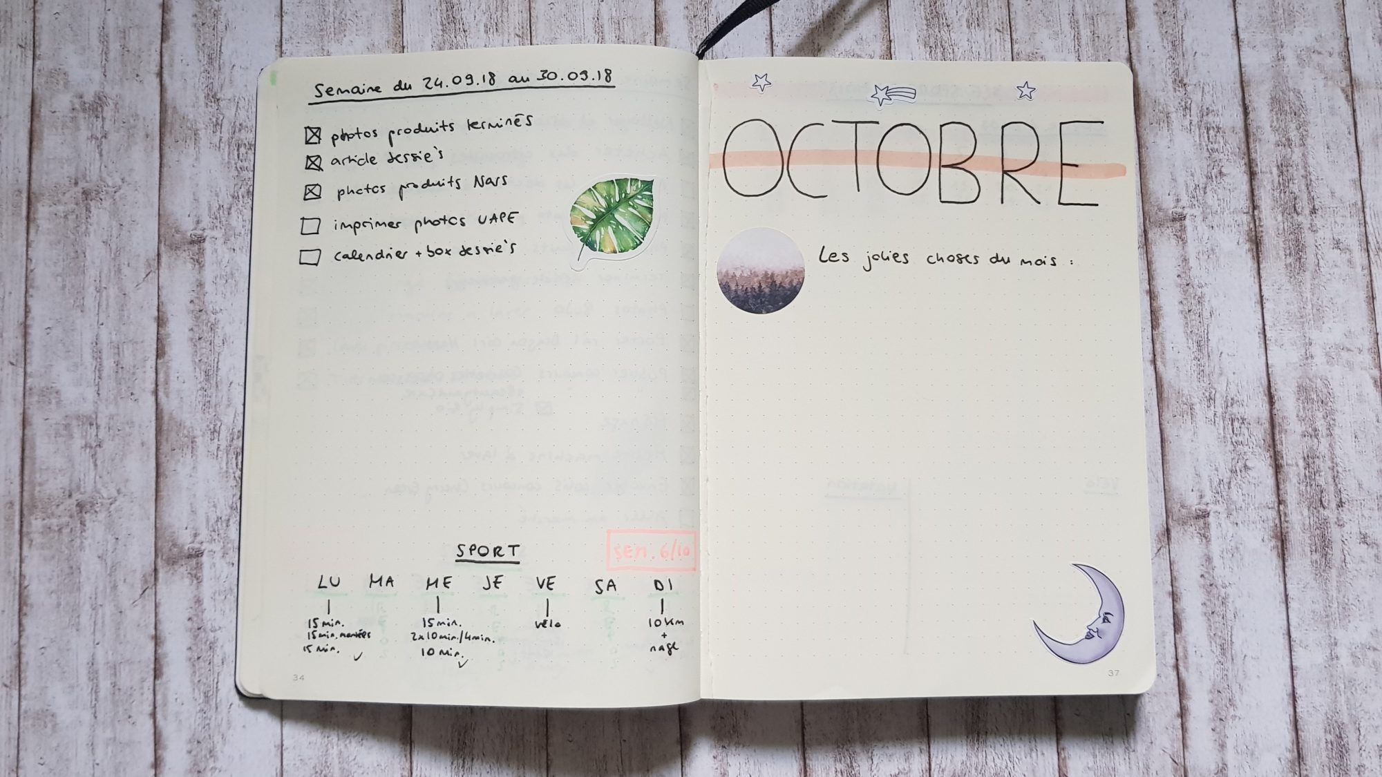 Mon premier Bullet Journal ! Pour blog, sport, dépenses