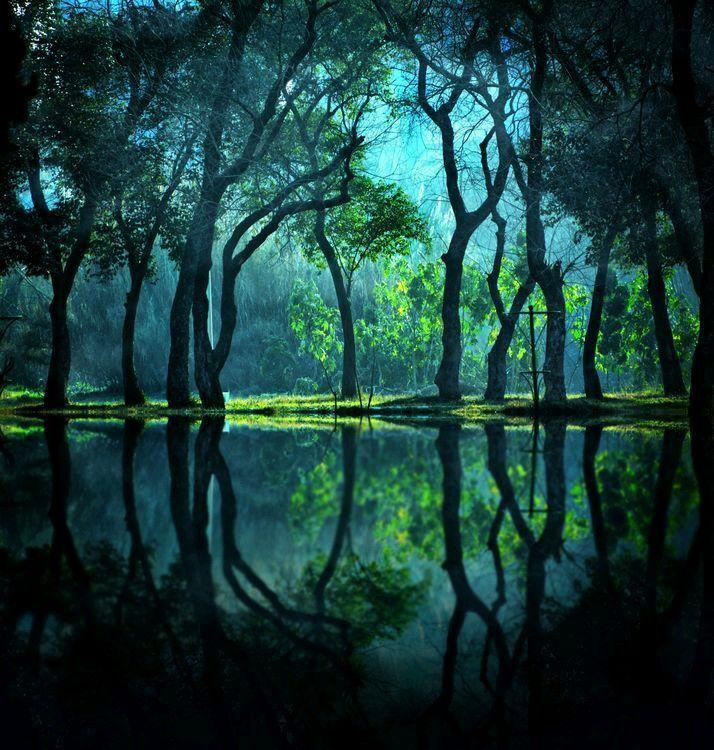 Happy Birthday Nature Photography Beautiful Nature Nature