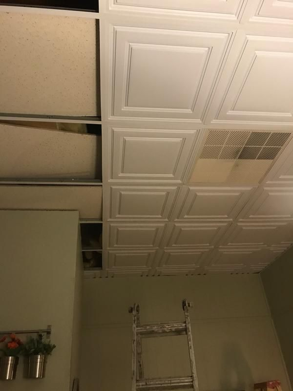 Stratford Ceiling Tiles in 2020 | Basement ceiling options ...