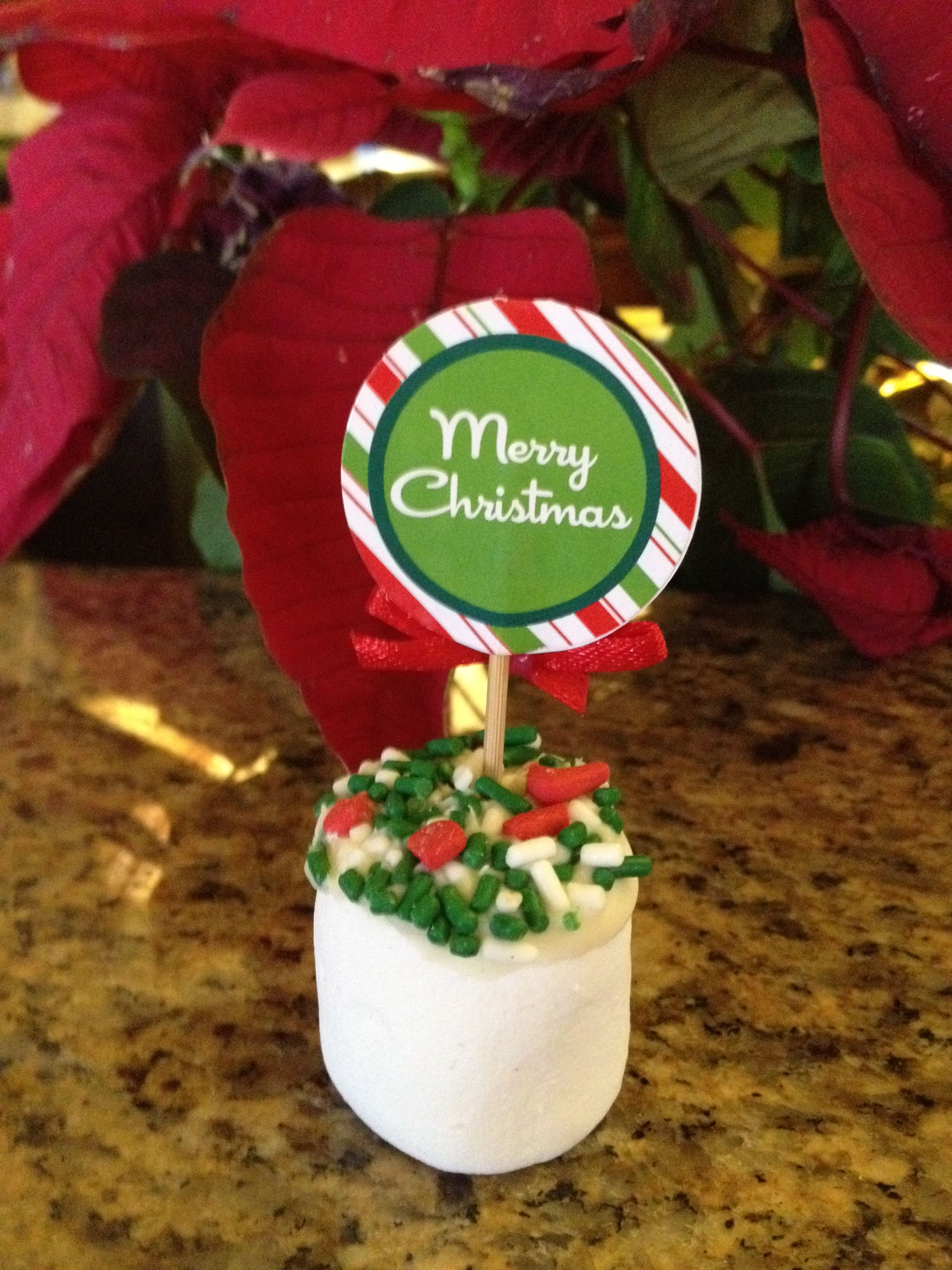 Marshmallows Dipped in Chocolate and Sprinkles with a festive pic!!! Perfect for toddlers! No mess - low in sugar!