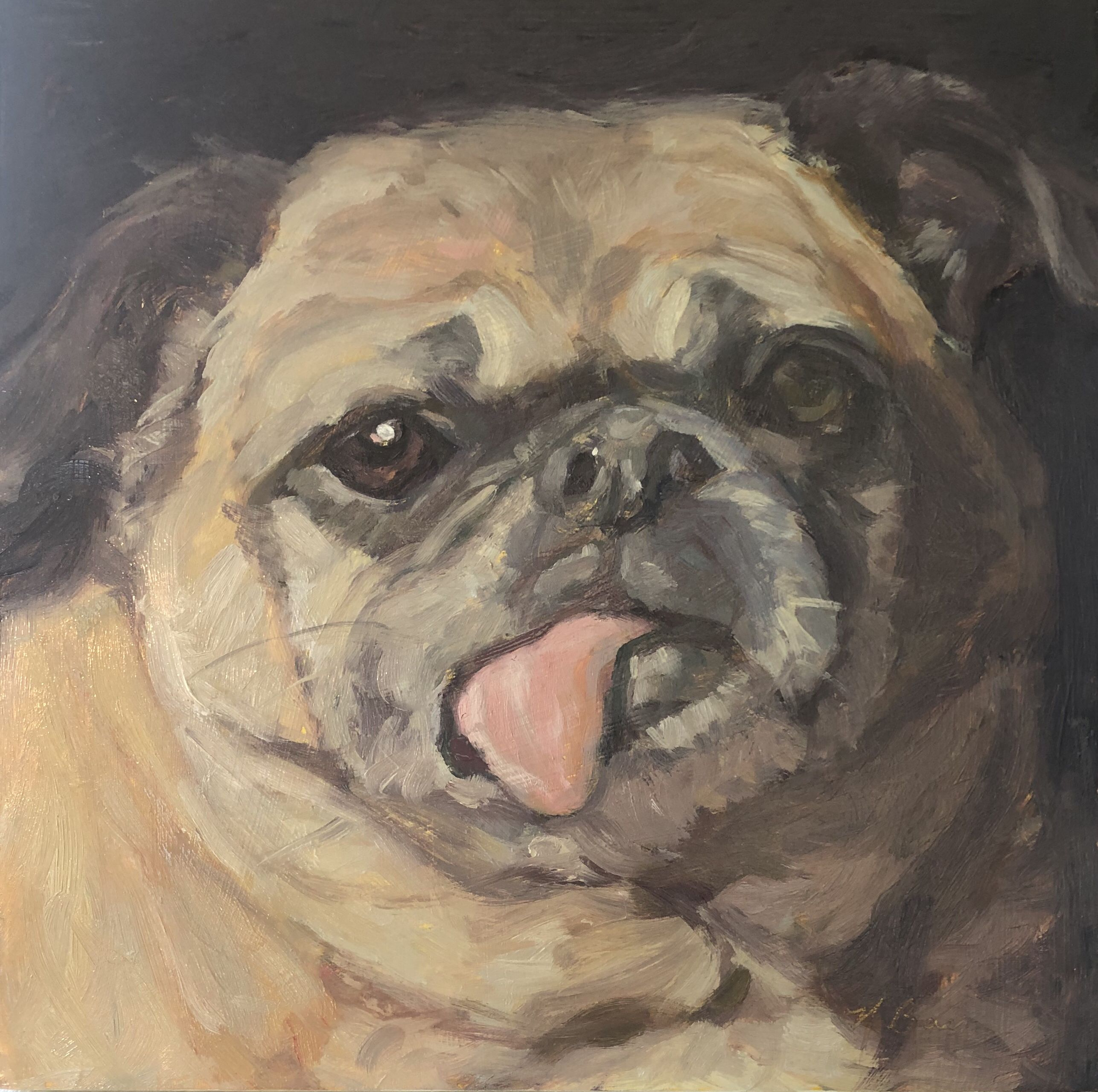 Commissioned Portrait In Oil Of A Pug With Personality This