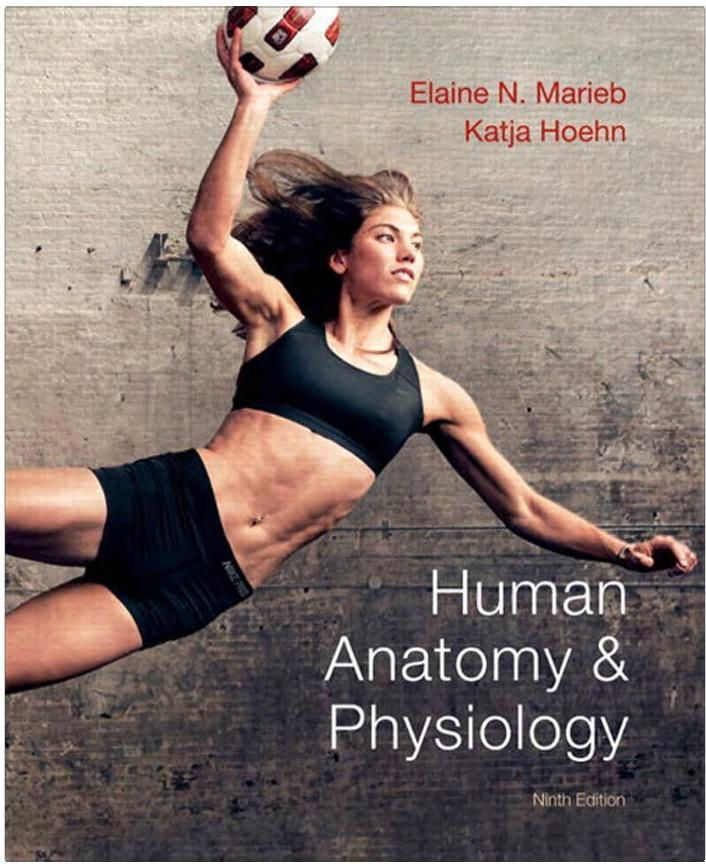 Human Anatomy and Physiology 9th Edition Textbook PDF - $19.99 ...