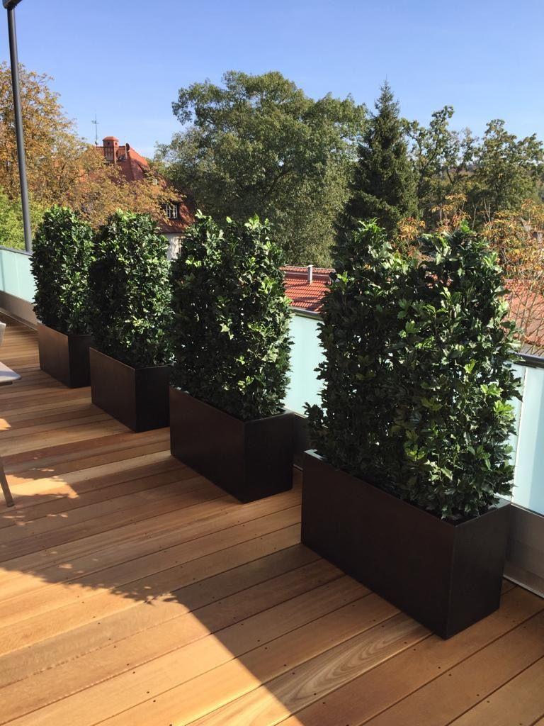 Kunsthecke Ilex Wetterfeste Kunstpflanzen Von Bellaplanta Sichtschutz Individuelle Terrassengestaltung Massan Kunstpflanzen Pflanzen Terrassengestaltung