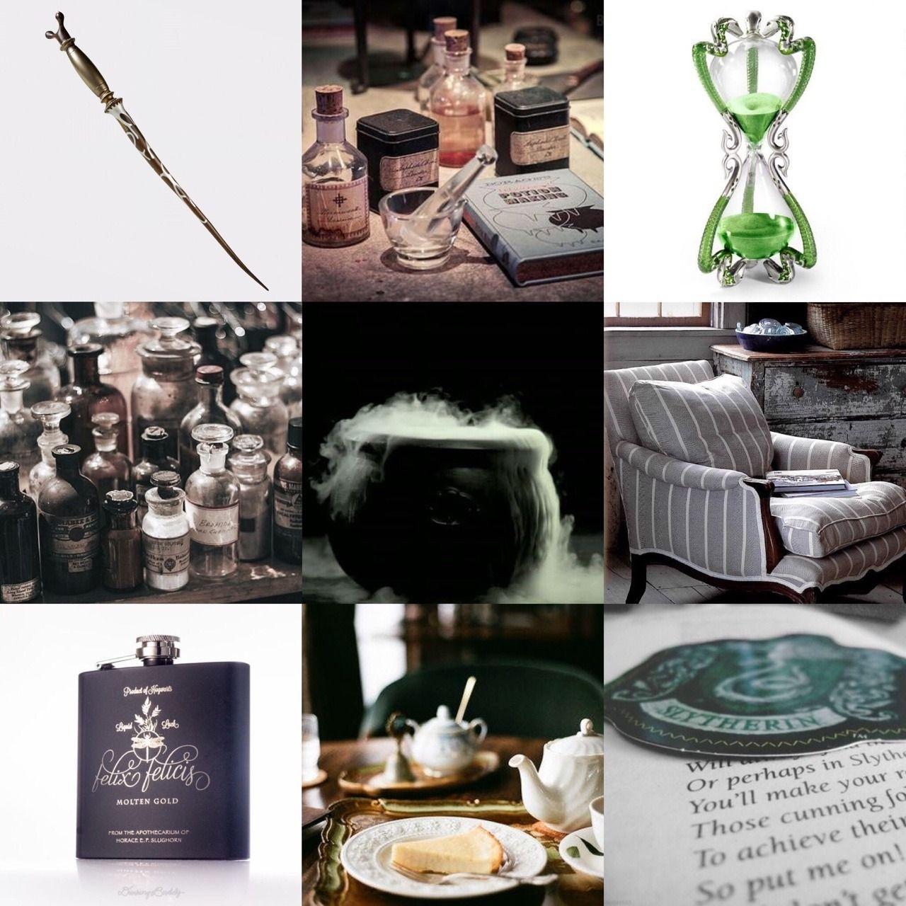 Harry Potter Mood Board Horace Slughorn Hogwarts Aesthetic Mood Board Harry Potter