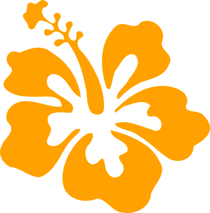 Hibiscus Flower Orange Hibiscus Clip Art Clip Art Hawaiian Quilt Patterns