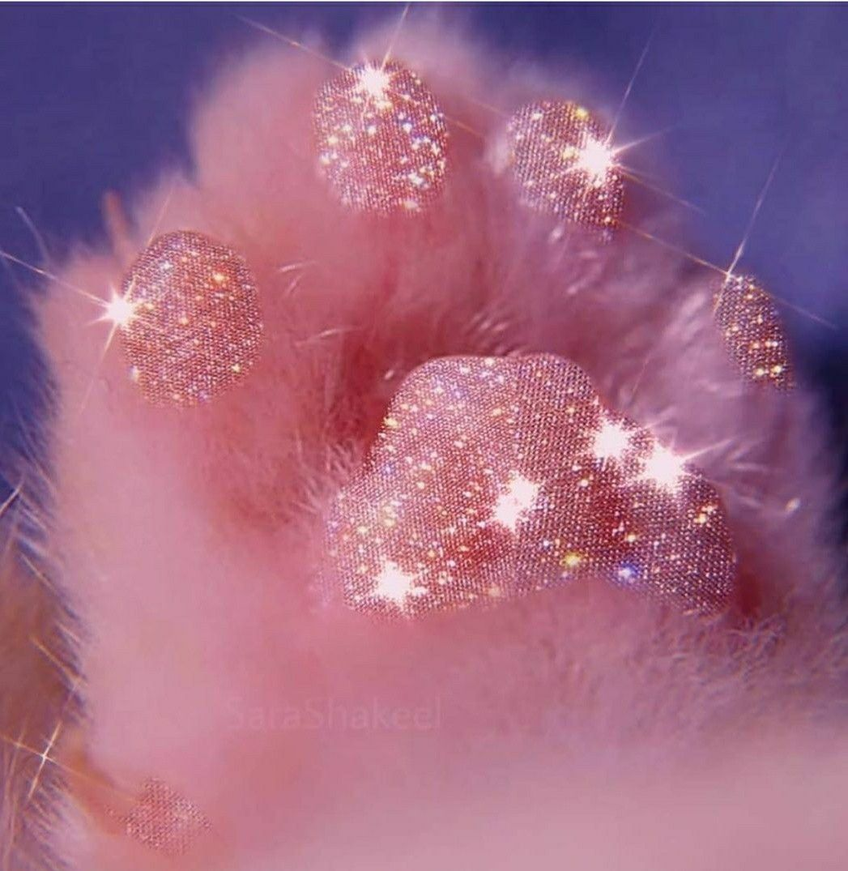 Sparkle Kitty Paw In 2020 Celestial Celestial Bodies Cat Paws