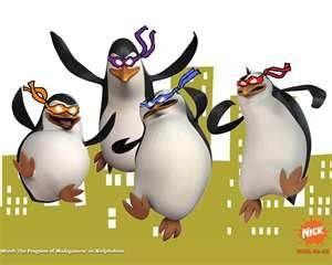 penguins - Bing Images
