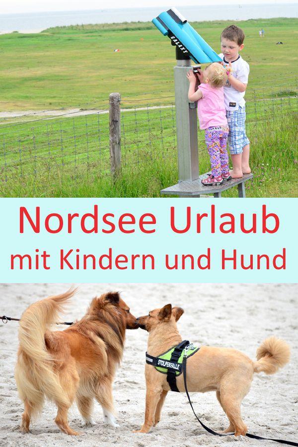 Urlaub Mit Kind Und Hund Neues Video Urlaub Mit Hund Nordsee Urlaub Hunde Und Kinder