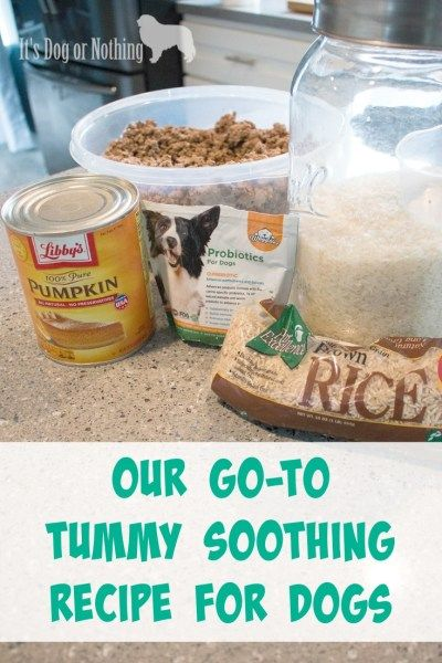 Our Go To Tummy Soothing Recipe For Dogs Make Dog Food Dog Food