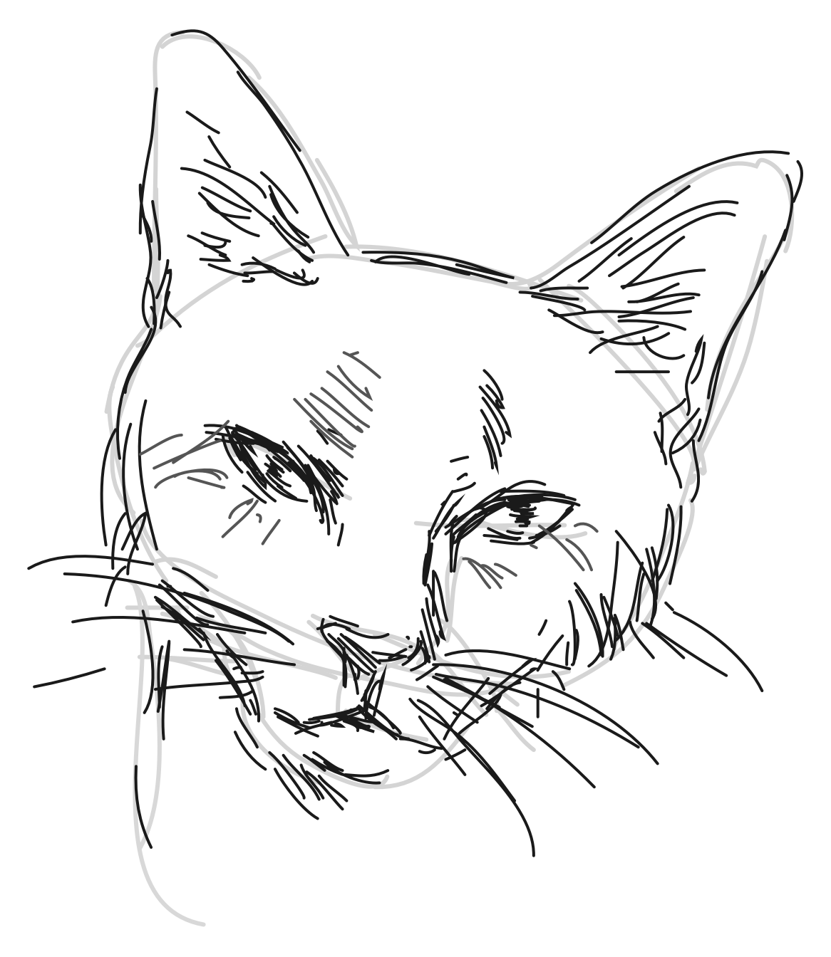 ShadowDraw® teaches YOU how to draw this in minutes
