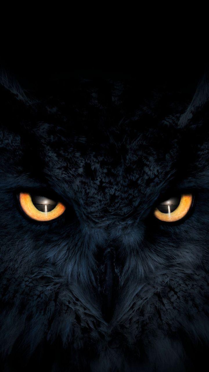 Owl, dark, glowing eyes, muzzle, 720x1280 wallpaper