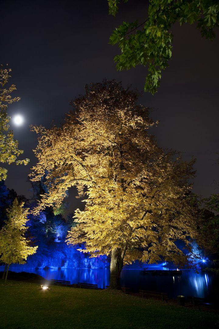 Xavier Boymont Lighting Pinterest Landscaping, Lighting design
