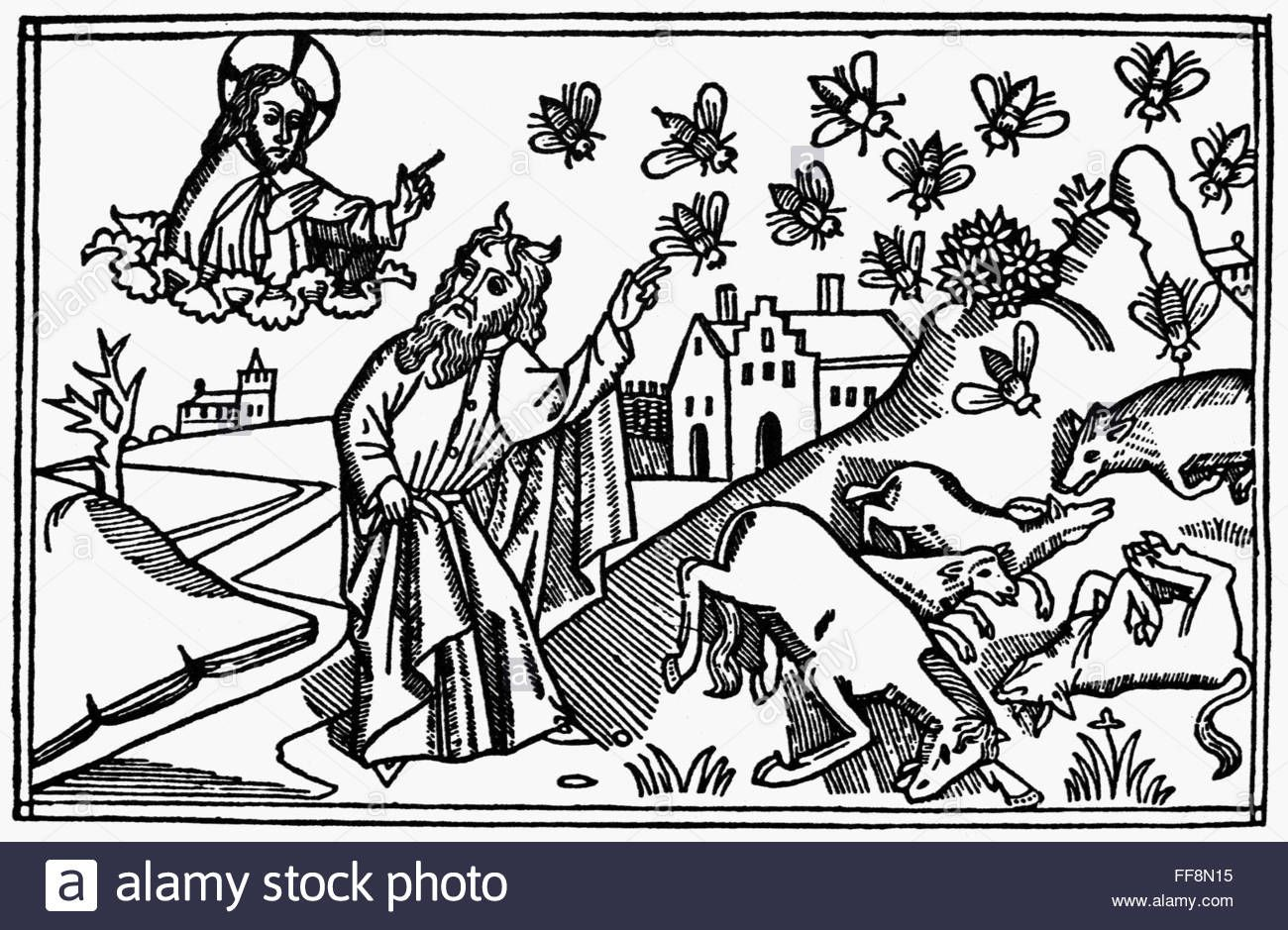 Plague Of Flies Nthe Plague Of Flies Exodus 8 20 24 Woodcut