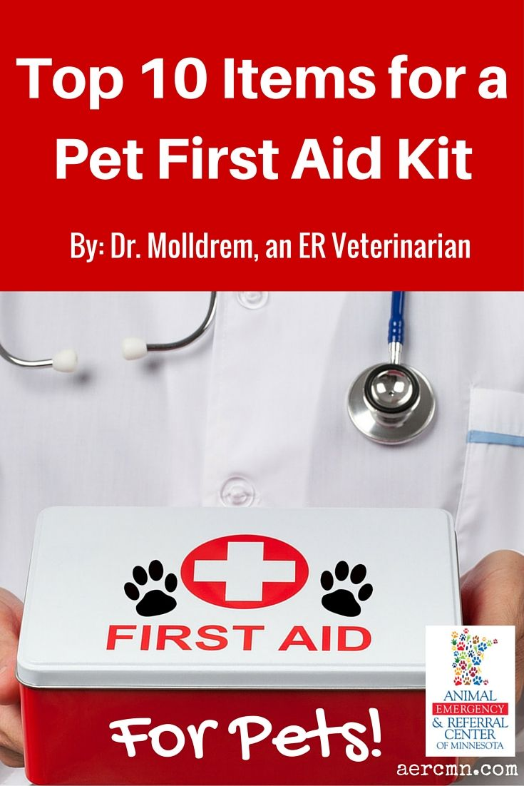 Top 10 Items for a Pet First Aid Kit Pets first, First
